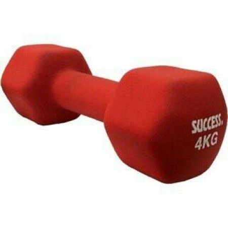 成功 防滑塑身 啞鈴 (4公斤) 超商限重5公斤以下 S5214