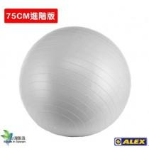 ALEX 韻律球 75CM銀灰 B-3075