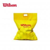 WILSON TRAINER 無壓練習球 網球 一袋 60顆 不拆售 WRT132200